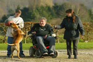 A parliamentary report addresses the issue of French disabled people in Belgium