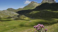 A Pyrenean climate strategy