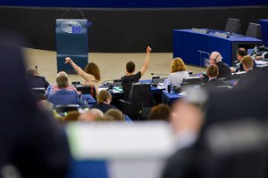 Opinion of the Parliament and the CoR on the proposal for a regulation on the ECBM