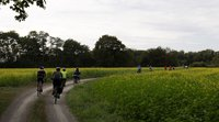 Strasbourg-Ortenau Eurodistrict: A cross-border cycle ride to bring citizens on either side of the Rhine together